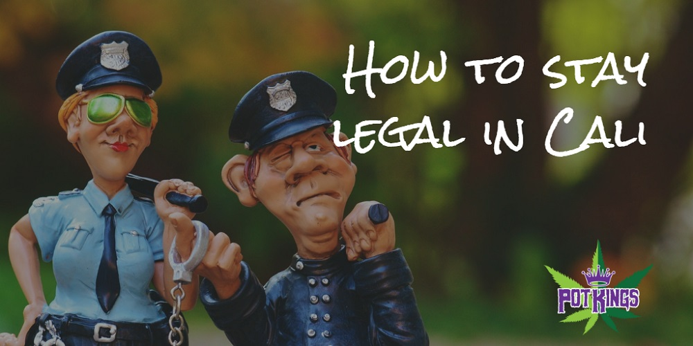 legal weed guidelines california-legal weed delivery sacramento-Pot Kings